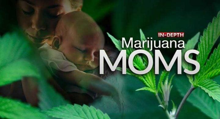 postpartum depression and medical marijuana